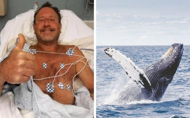 Baleia cospe pescador depois de o tentar engolir