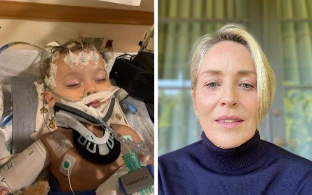 Sharon Stone, morte, sobrinho, 11 meses, falência de órgãos, atriz, River