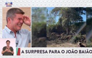 """João Baião desfaz-se em lágrimas na emissão desta terça-feira do programa """"Casa Feliz"""""""